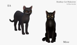 Кошки Uten_n56