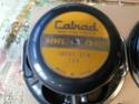calrad pioneer speaker(used) 20160119