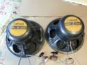 calrad pioneer speaker(used) 20160123