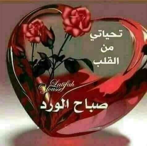 Bonjour tout le monde - Page 15 56474610