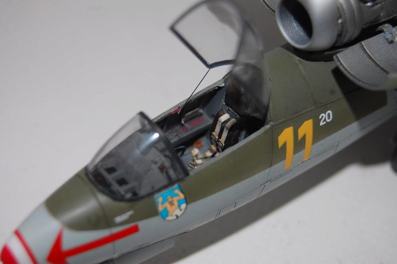 He 162 Tamiya 1/48 Dsc_9314
