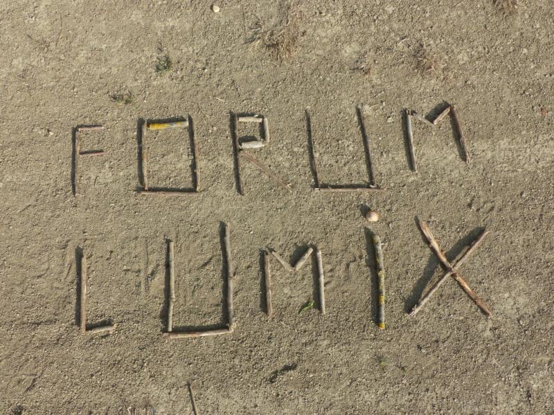 F  O  R  U  M---L  U  M  I  X P2010510