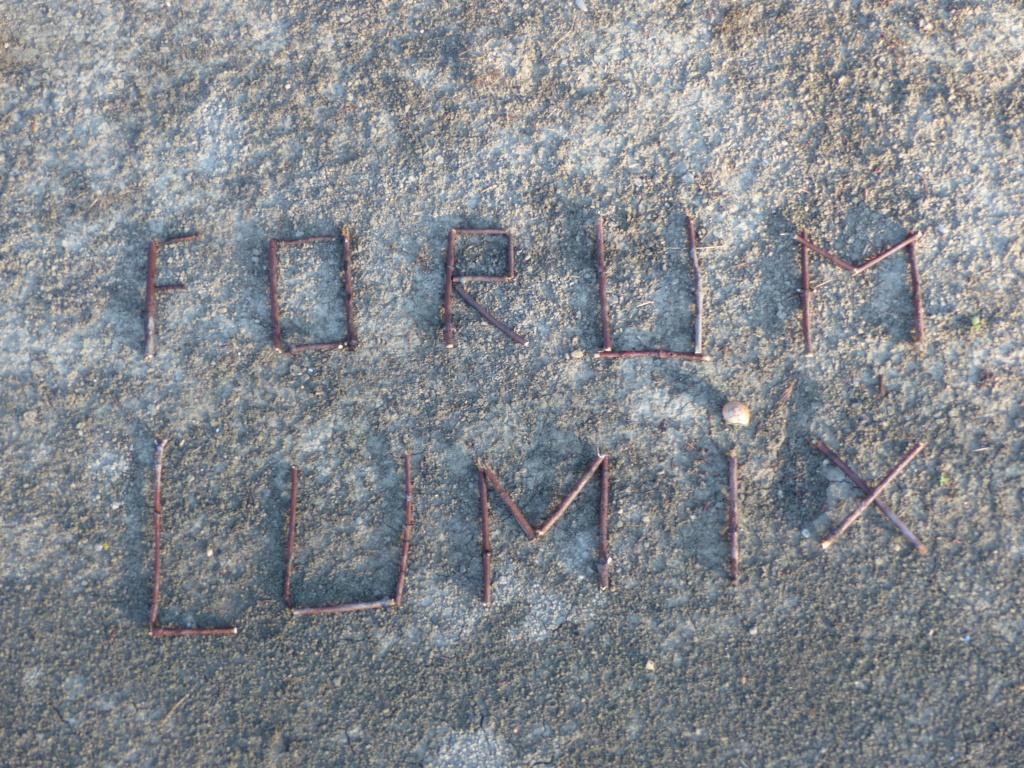 F  O  R  U  M-----L  U  M  I  X P2030410