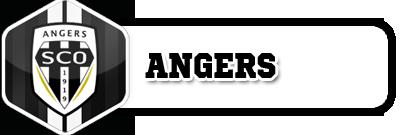 Inscription et choix du coach - Page 2 Angers12