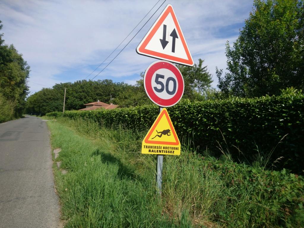 passage vitesses La_dom11