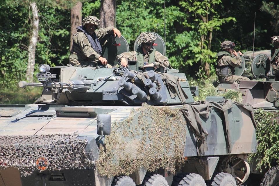 Les Forces Armées Polonaises/Polish Armed Forces - Page 24 2411