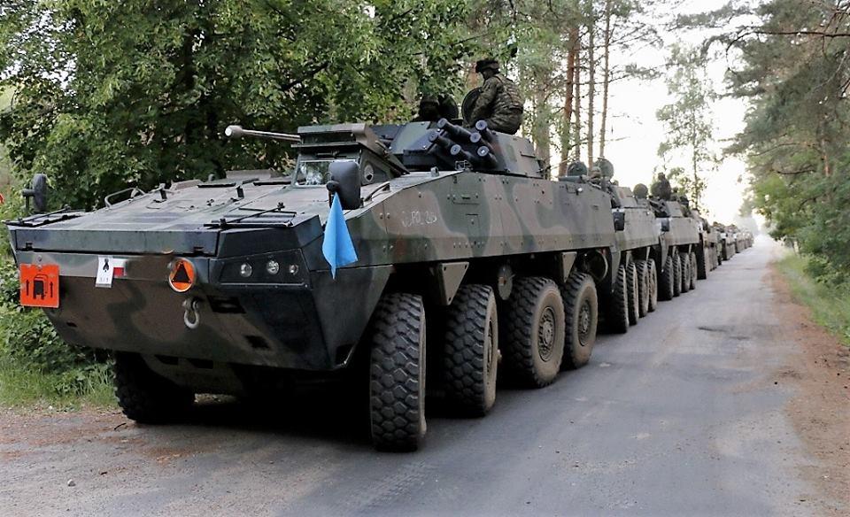 Les Forces Armées Polonaises/Polish Armed Forces - Page 24 2419