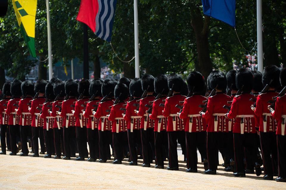 Armée Britannique/British Armed Forces - Page 10 2719