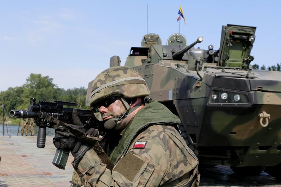 Les Forces Armées Polonaises/Polish Armed Forces - Page 24 3114
