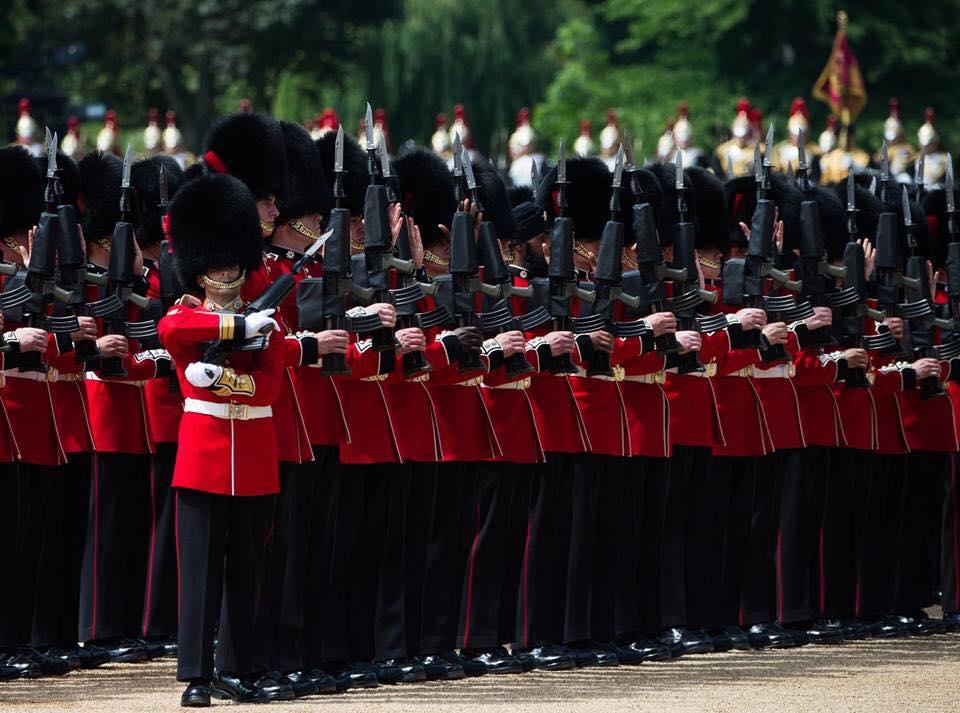 Armée Britannique/British Armed Forces - Page 10 3115