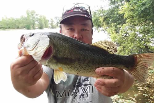 Comment faire des photos de poissons record Mat9110