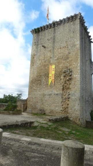 Région entre deux mers près de Bordeaux P1070611