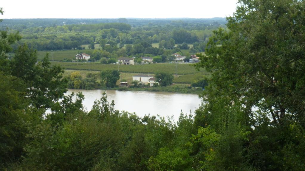 Région entre deux mers près de Bordeaux P1070617