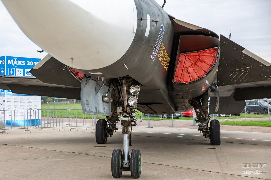 Su-47 Berkut and MiG 1.44  - Page 2 48745013