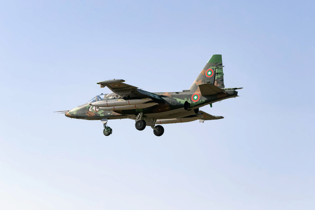 Belarus Defence Industry - Page 3 83915710