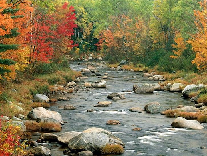 L'eau paisible des ruisseaux et petites rivières  84b2fe10
