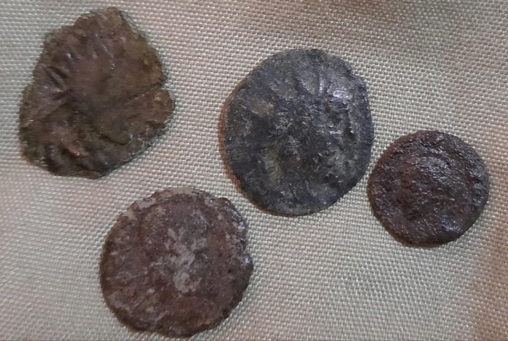 Pièces monnaies antiques romaines ? 79866310