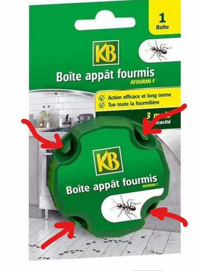 Trucs contre fourmis? Captur22