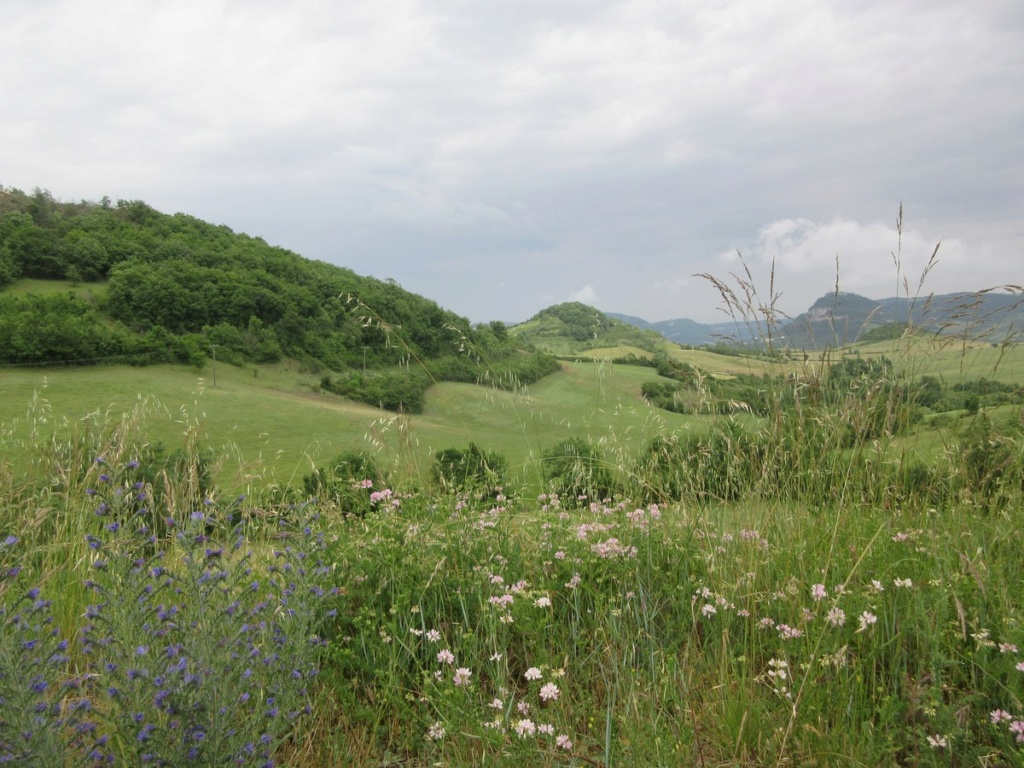 Quelques paysages de France Img_0644