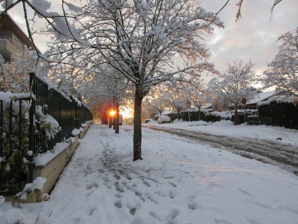 Première neige ! Img_0823