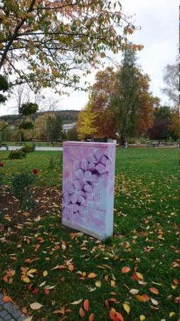 Anti Graffiti für Zweckgebäude - Seite 5 Dsc_1413