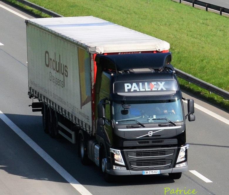 Pallex  (Saint Florent sur Cher, 18) 101910
