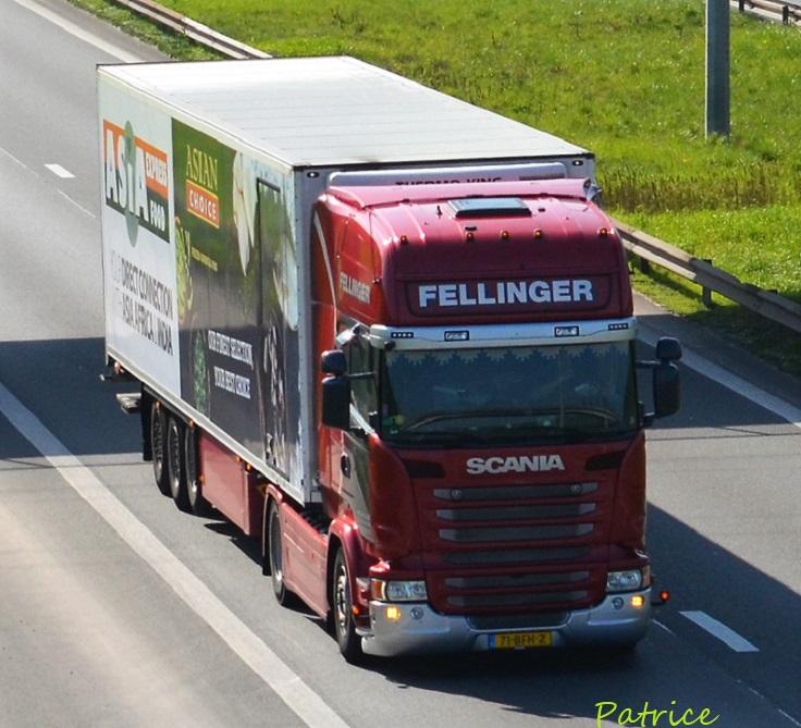 Fellinger  (Roden) 137810
