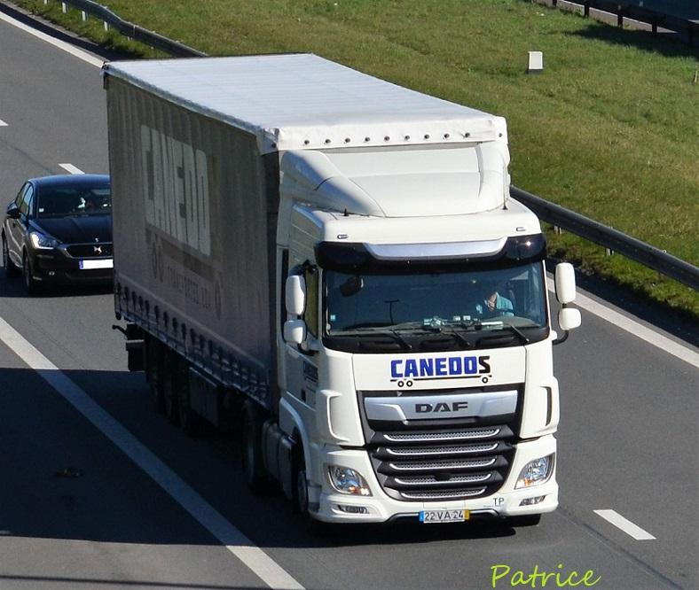 Canedos 20818