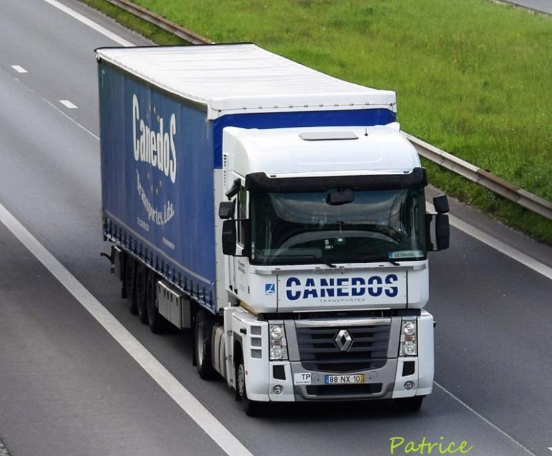 Canedos 30310