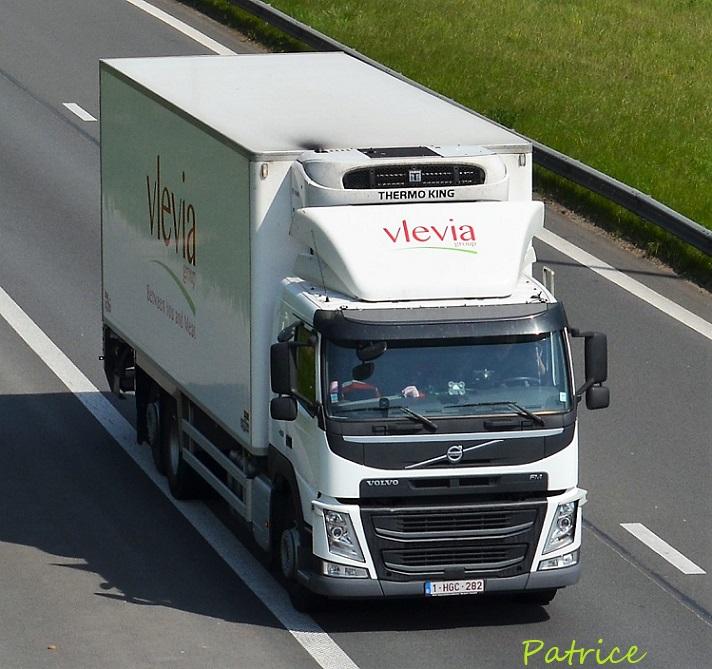 Vlevia Group  (Mouscron) 37110