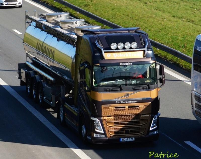 Polack Trans  (Neukalen) 44210