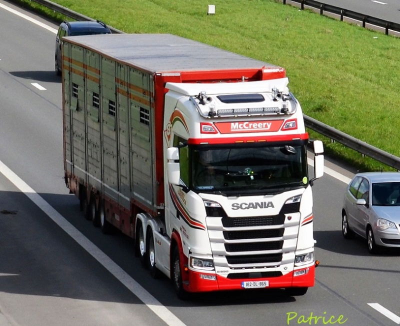 McCreery  (Donegal) 64310
