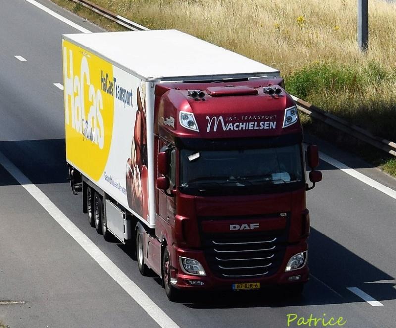 Machielsen  (Breda) 7315