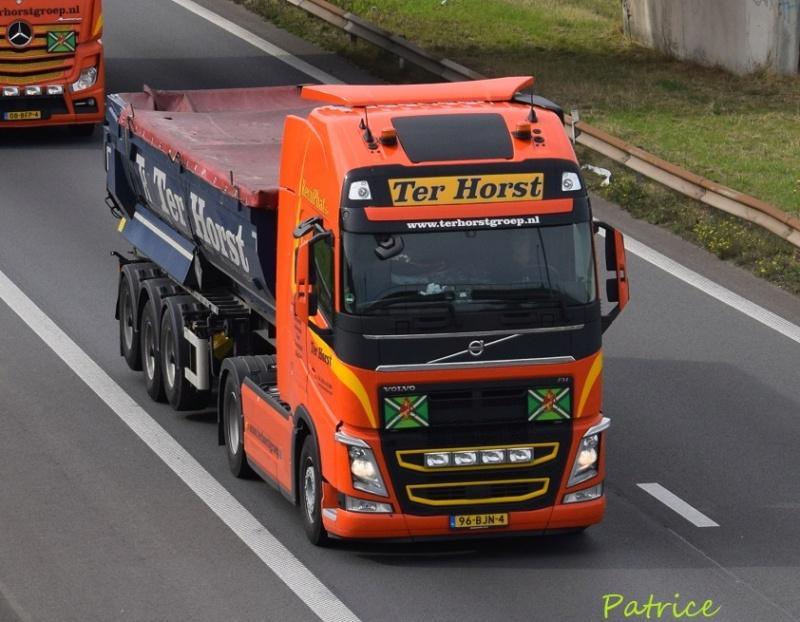 Ter Horst Groep  (Varsseveld) 8041