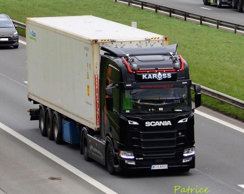 Kaross  (Krzaki) 88910