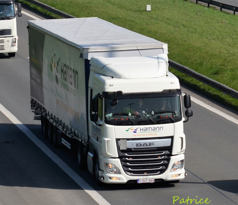 Hamann International Logistics (Wetteren) 95210