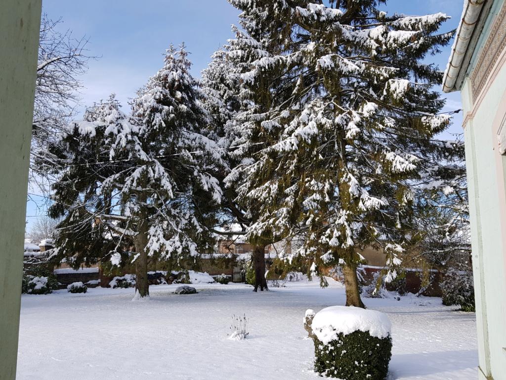 pas de neige  - Page 2 20190111