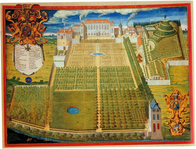 Le Jardin des Plantes Jardin10