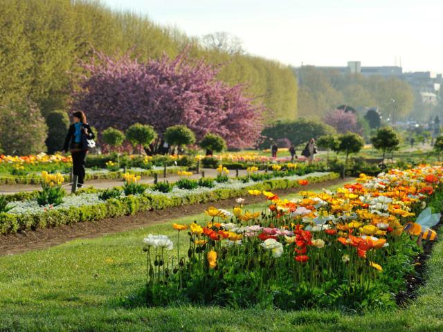 Le Jardin des Plantes Ryaeyq10