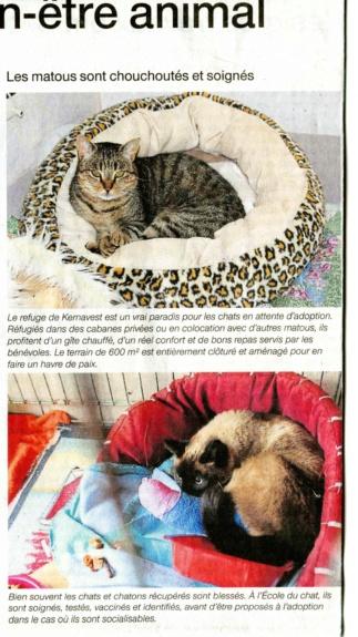 Article Ouest-France  édition Auray 9 Janvier O-f_ja10