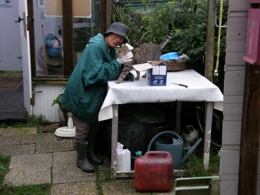 La face cachée de l'Ecole du chat de Quiberon - Page 10 Pa271227
