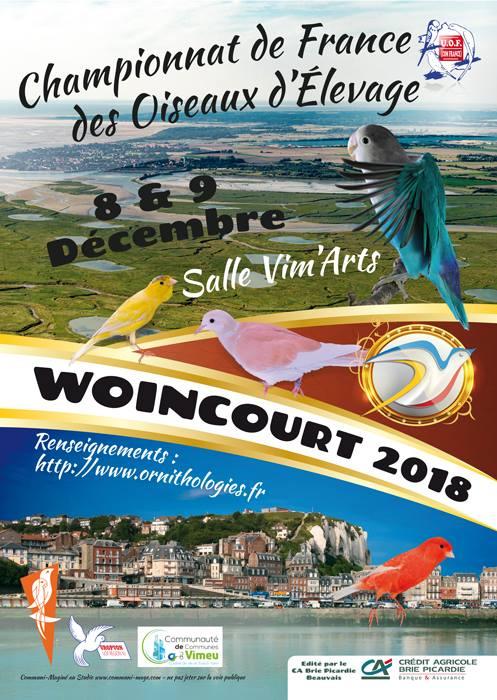 France 2018 à Woincourt (08-09/12/2018) 34771310