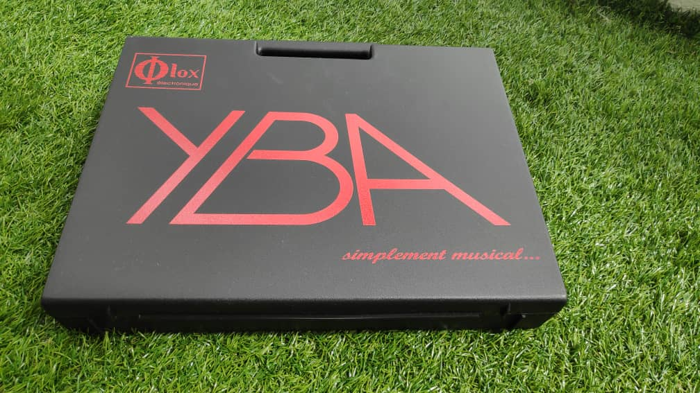 Yba diamond speaker cable (sold) Img-2131