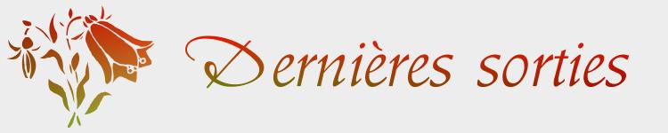 NEWSLETTERS - INFOS Derniy10