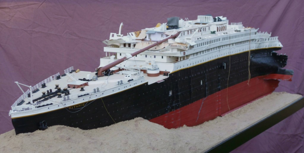 RMS Titanic, lequel choisir ?  Img_1445