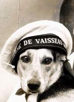 [ Les traditions dans la Marine ] LES MASCOTTES DANS LES UNITÉS DE LA MARINE - Page 31 Jojo_n13