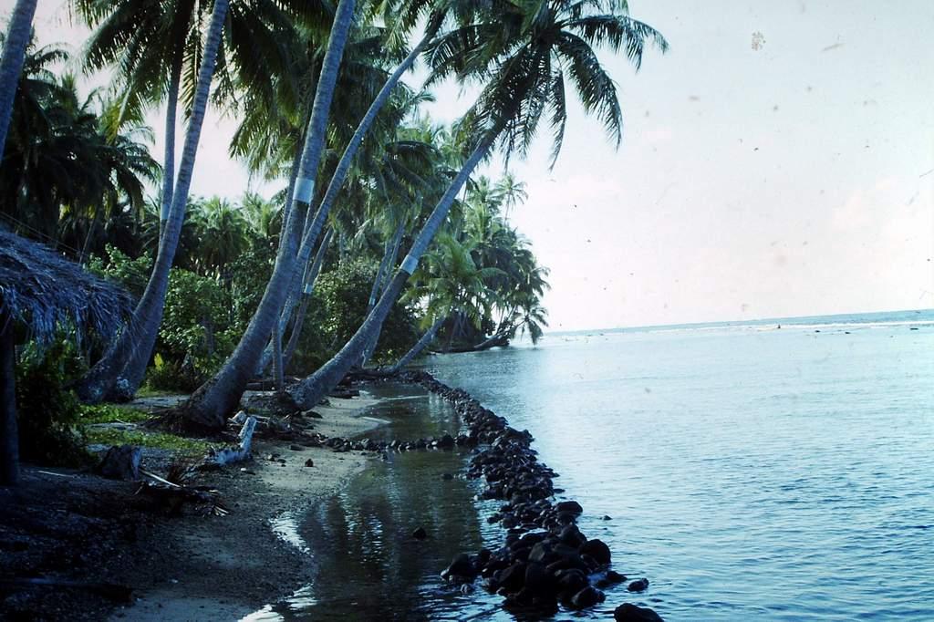 [CAMPAGNES C.E.P.] TAHITI - TOME 2 - Page 30 Pict0308