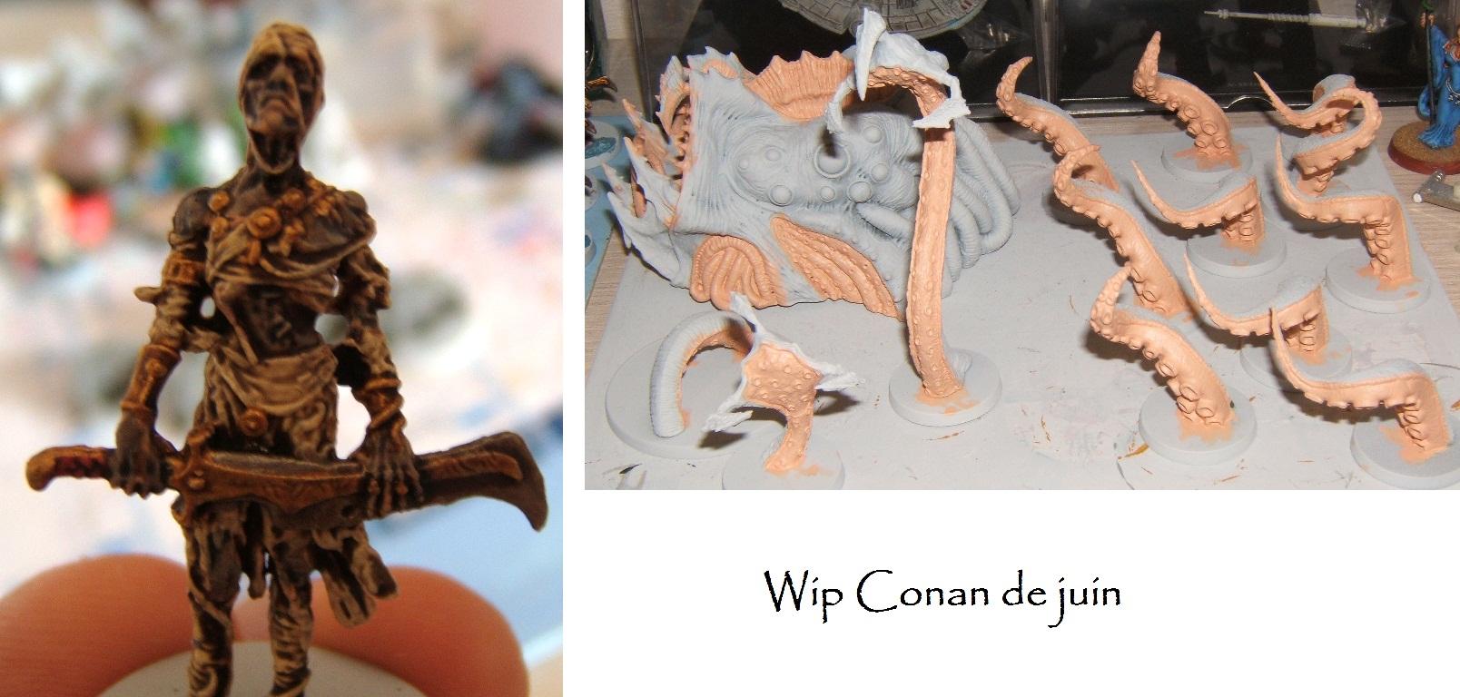 Ma version du Conan de Monolith - Page 3 Wipcon10