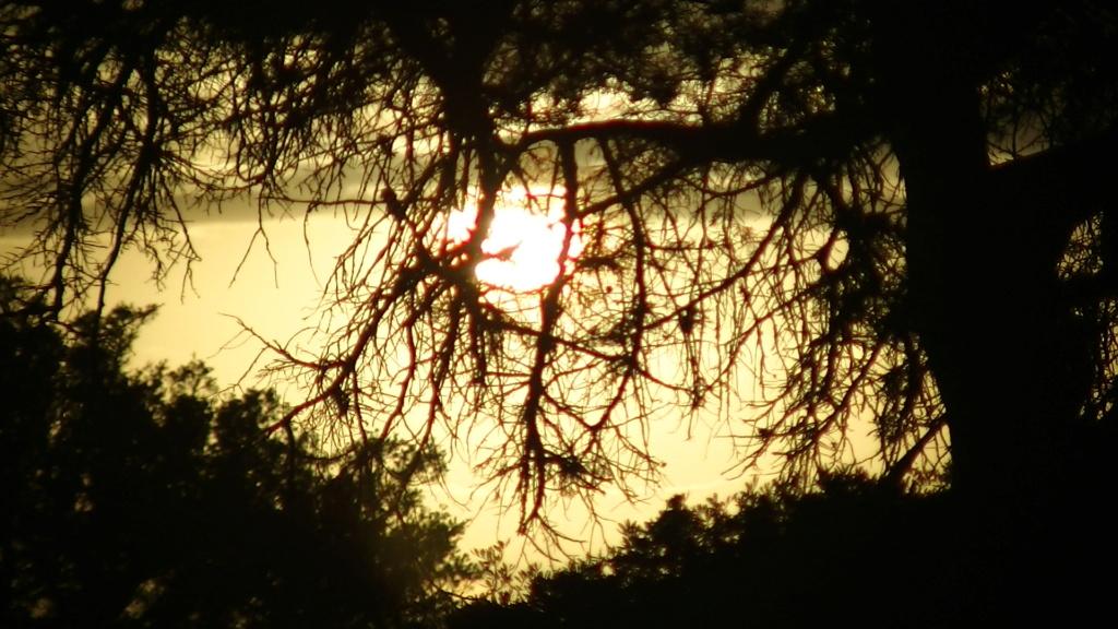[nos beaux pays : la France, le Maroc et .....  le Monde] Couchers de soleil - Page 3 Pic_0612