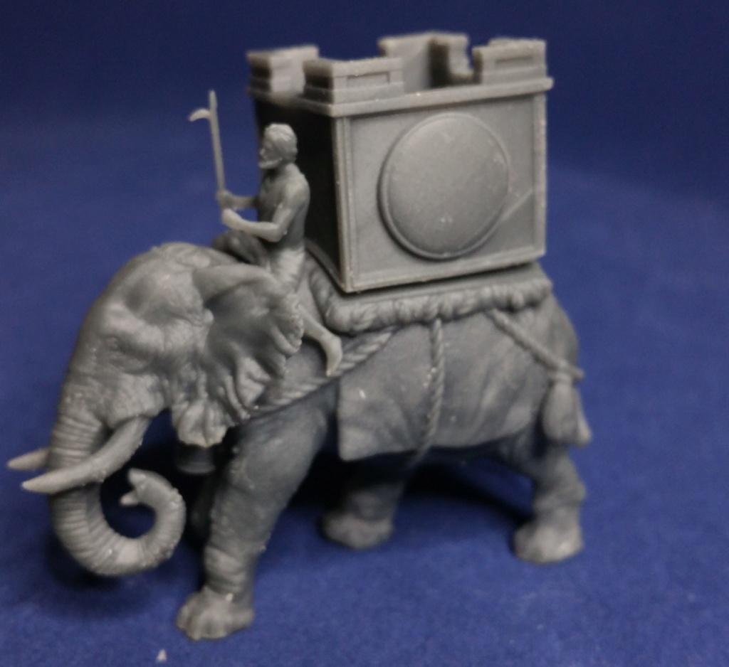 Éléphant Carthaginois et Indien 85542010